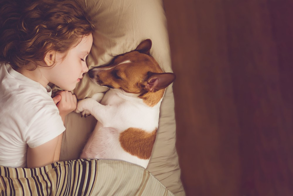 Attention Side Sleeper: Here are the Best Practices & Side Sleeping Positions