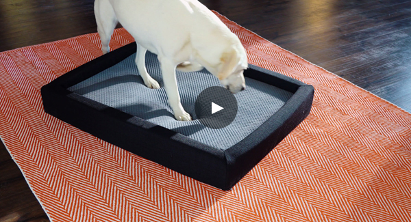 Layla Pet Bed