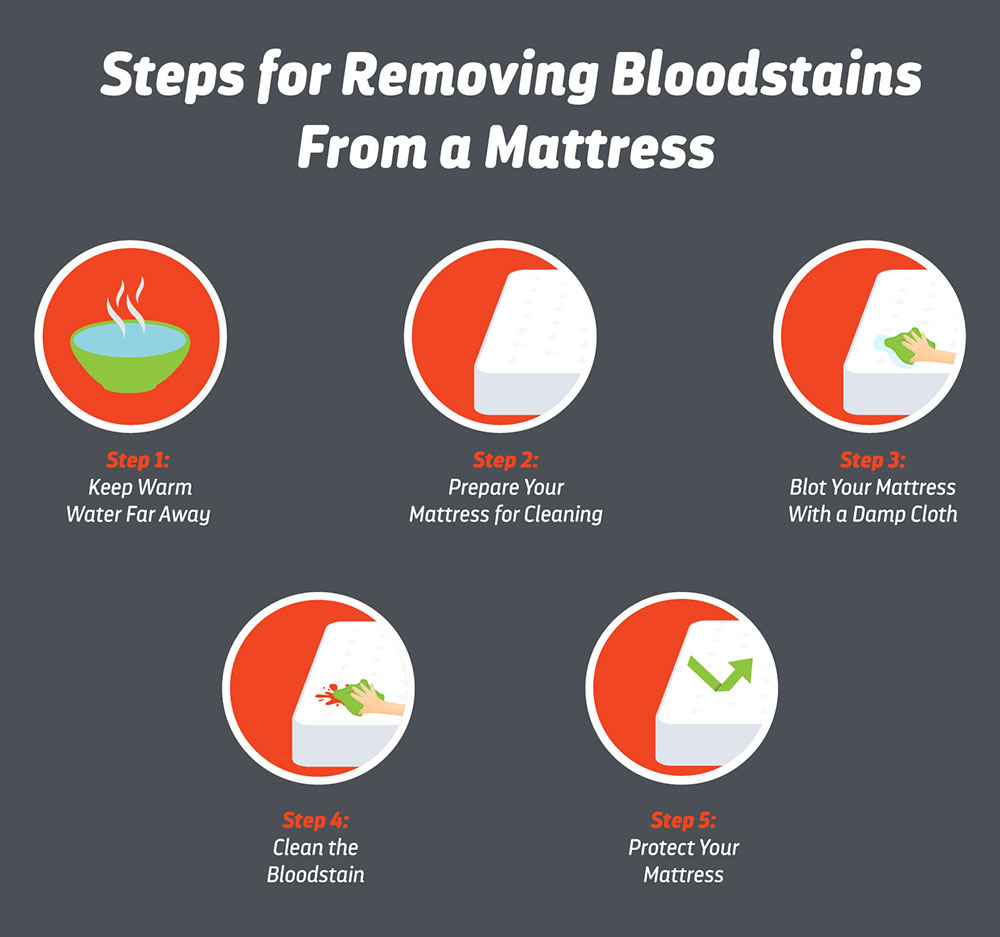 Removing Bloodstain Steps